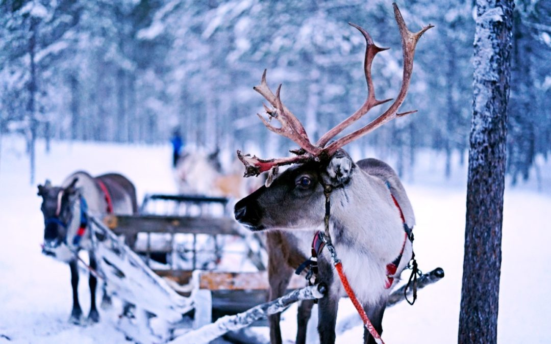 Santa's Sleigh and Your Solar Panels: What are the Implications?